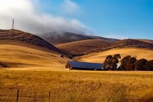 Egy kis tanyán élnék, mindentől távol