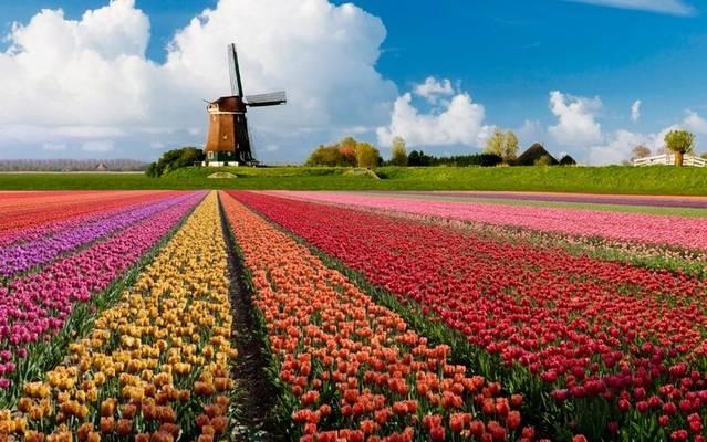Válaszd ki Hollandia fővárosát!