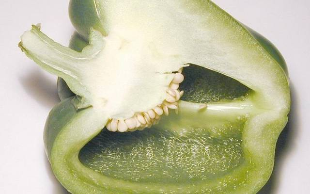 kaliforniai paprika (zöld)