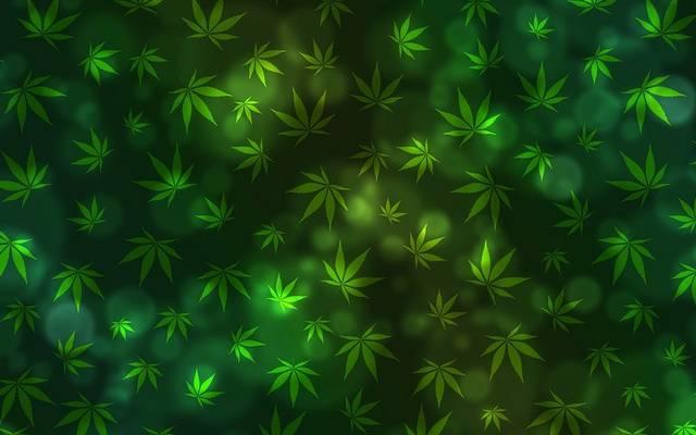 Legalizálni kellene-e a könnyű drogokat, mint a marihuána?