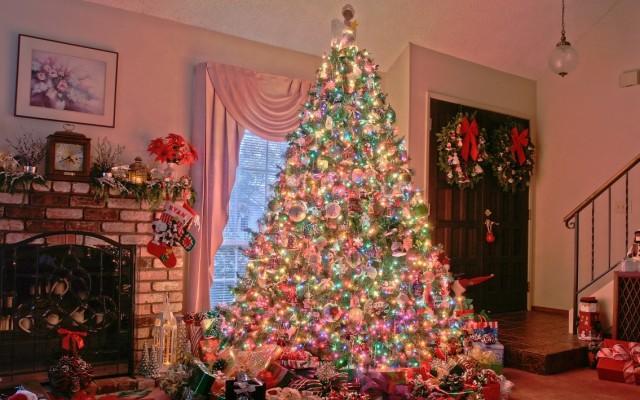 Karácsonyi dilemma: Műfenyő, vagy igazi?
