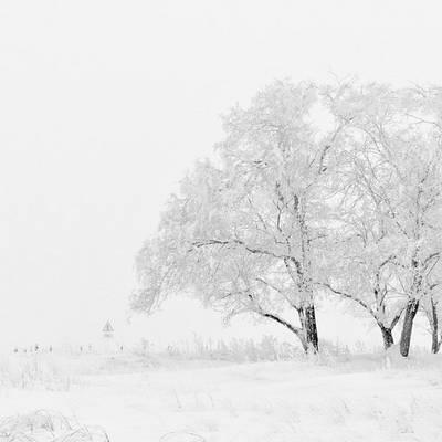 Fehér és világos színek