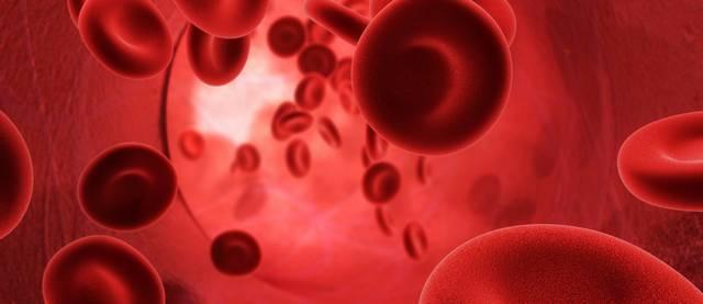 Hány liter vér kering az emberi testben?