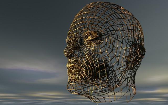Tíz kvízkérdés a varázslatos emberi testről
