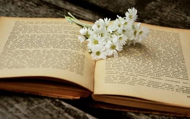 Ki írta a Büszkeség és balítélet c. könyvet?