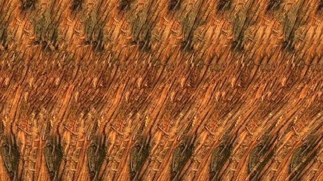 Mit látsz a képen elrejtve?