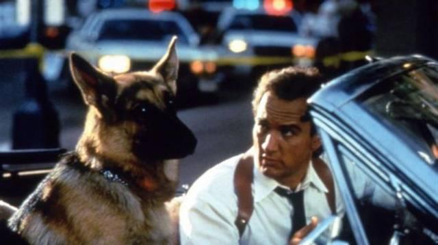 James Belushi és egy német juhász rendőrkutya története. Mi a címe?