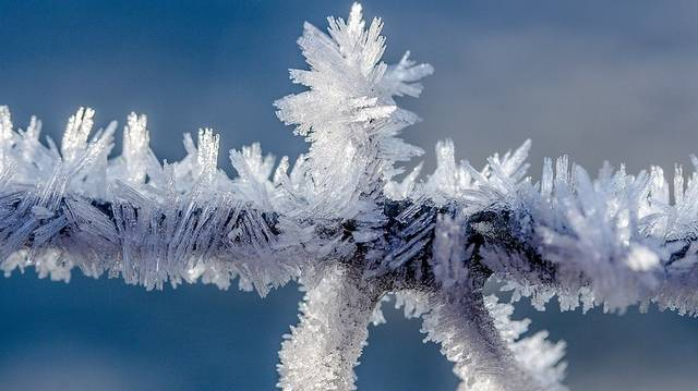 Melyik magyar költő December című versének első versszaka ez? Cammogva lép, szelet köhög  s reszketve rázza vén fejét,  amelyről hulló hajaként repül,  száll a hó szerteszét.