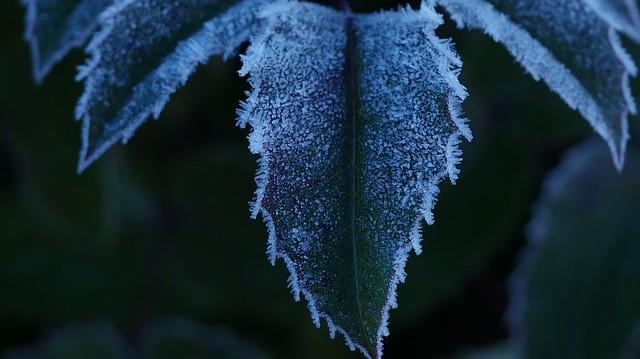 A csillagászati tél kezdetét jelentő téli napforduló Magyarországon decemberben van. Általában hányadikára esik ez a nap?