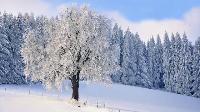 Mikor van a téli napforduló?