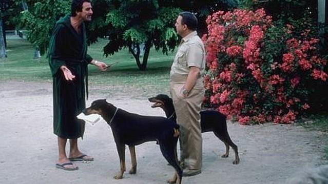 John Hillerman, a Magnum című sorozat egyik főszereplője két kutya gazdája volt a filmben. Hogy hívták az állatokat?