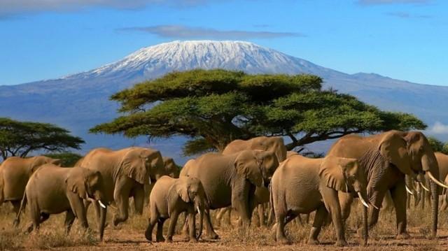 Tudod-e hol van Tanzánia?