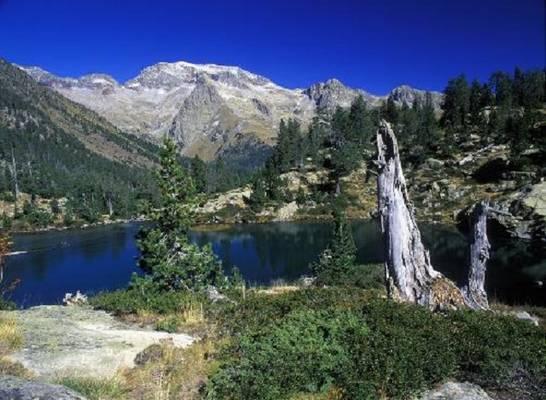 Hol található a Pireneusok?