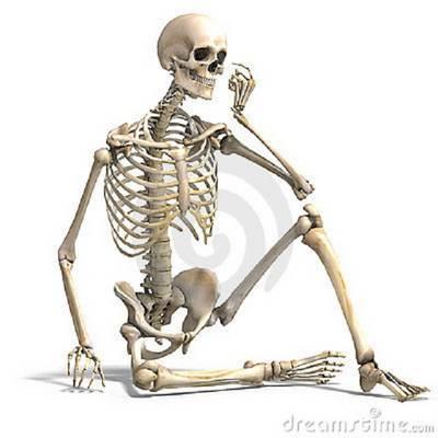 Hatodik óra, biológia: Minek a csontja a singcsont?