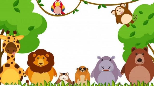 Milyen tudományág a zoológia?