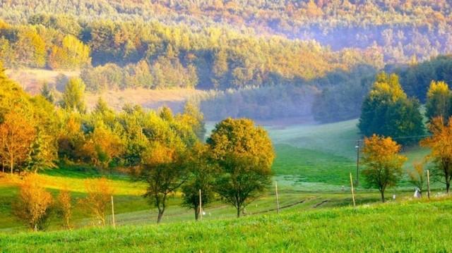 Vas megye délnyugati sarkában található ez az erdőkkel, ligetekkel szabdalt táj. Melyik magyar nemzeti park ez?