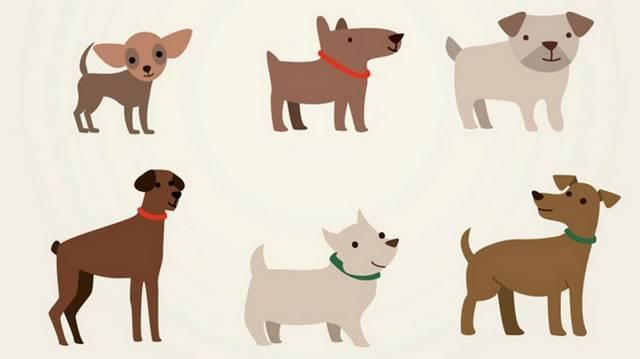 Egy utcában él 60 kutya, 1/3-a egyáltalán nem szokott ugatni, akkor hány kutya ugatós?