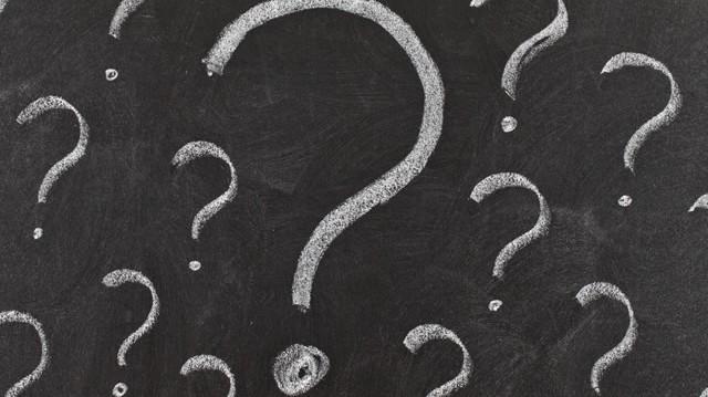 Milyen állat a mangalica?