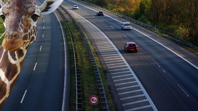 Melyik autópályán jutunk el Szegedre?