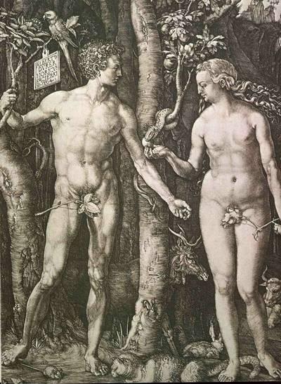 Ádám melyik csontjából teremtetett Éva?
