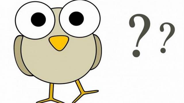 Melyik állat él szinte kizárólag a déli féltekén?