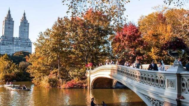 Melyik város híres parkja a Central park?