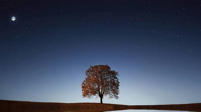 Ez a csillag tűnik fel a legkorábban az égbolton napnyugtakor