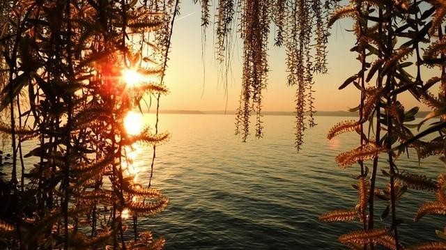 A felsoroltak közül melyik település található a Balaton déli partján?