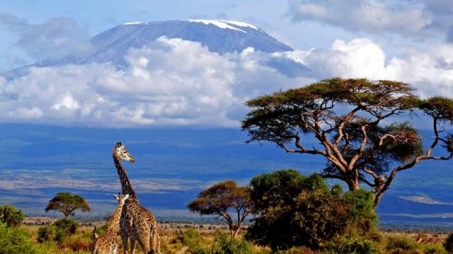 Híres világutazó, Afrika-kutató volt. Megmászta a Kilimandzsárót és a Kenya-hegyet is.