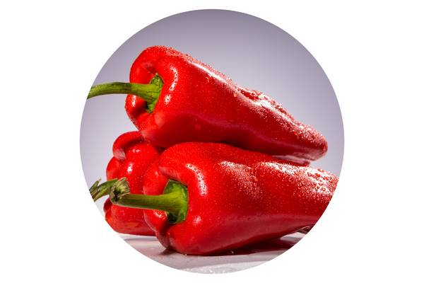 Kik termesztettek először paprikát?