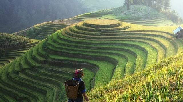 Ki  volt az a tudós-utazó, aki megjárta Ázsiát?