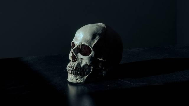 Melyik nem a koponya egy része?