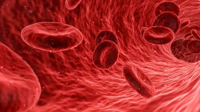 Hány liter vére van egy embernek?