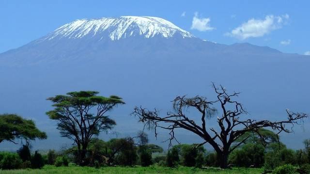 Melyik Afrika legmagasabb hegye?