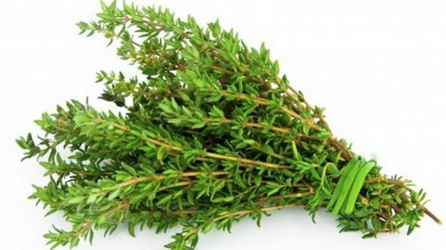 Melyik fűszernövényt látod a képen?