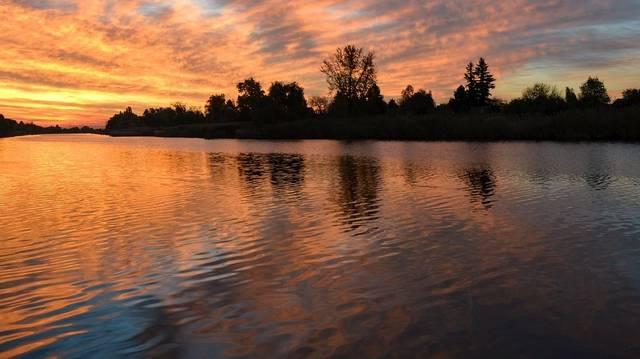 Melyik folyó ömlik a Tisztába az alábbiak közül?
