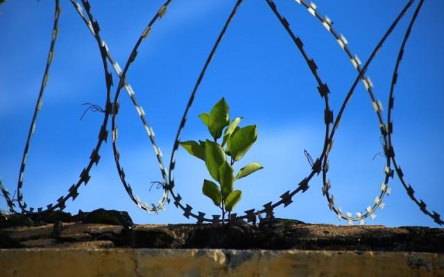 Elfogadható-e a halálbüntetés egy civilizált országban?