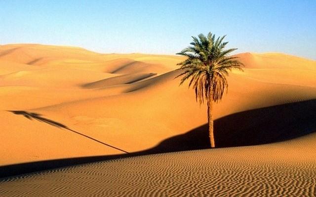 A Föld legnagyobb sivataga (Szahara) melyik földrészen található?