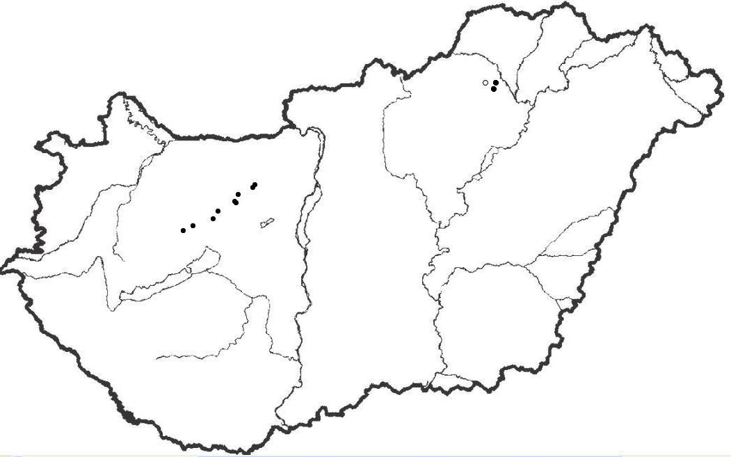 Mely ország nem határos Magyarországgal?