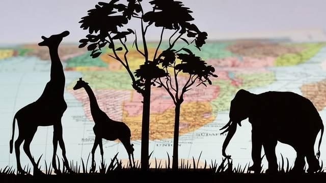 Melyik állat NEM él a Szaharában?
