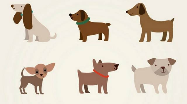 Ha 40 kutya él egy utcában, 1/4-e szuka, akkor hány kutya nőstény?