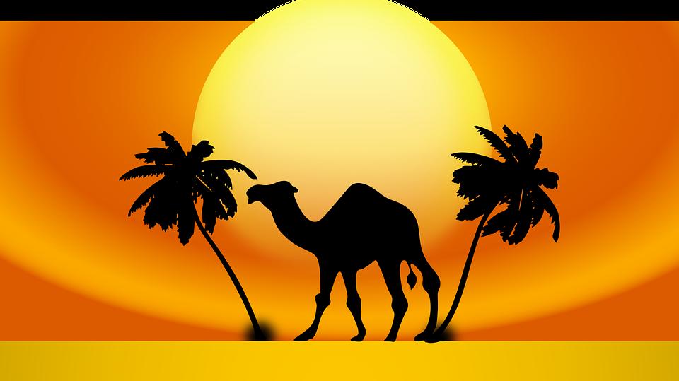 Melyik ország fővárosa Kairo?