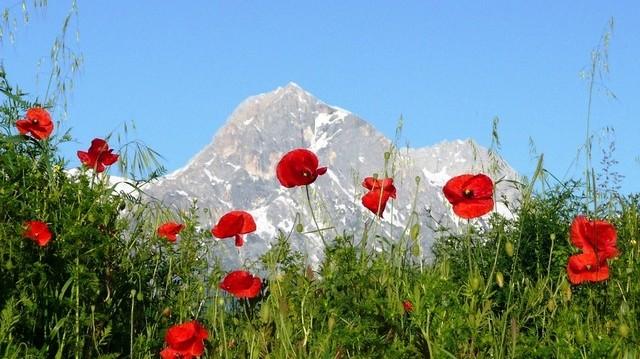 Hol található az Appenninek (Appennin-hegység)?