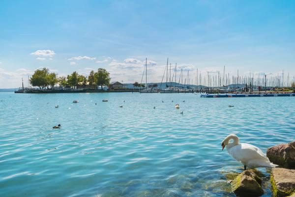 Hol rendezik a Balaton Sound fesztivált?