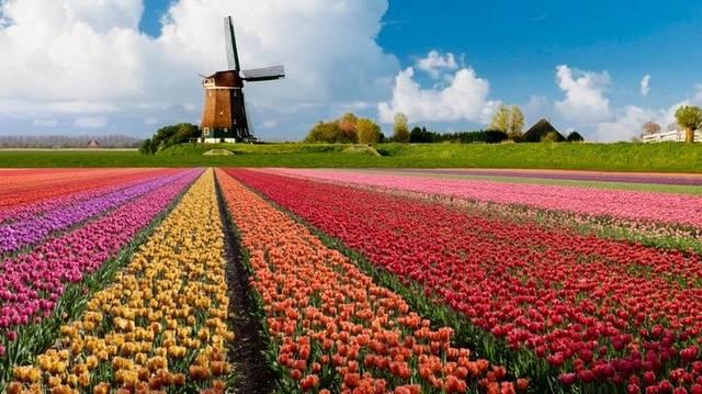 Válaszd ki a holland fővárost!