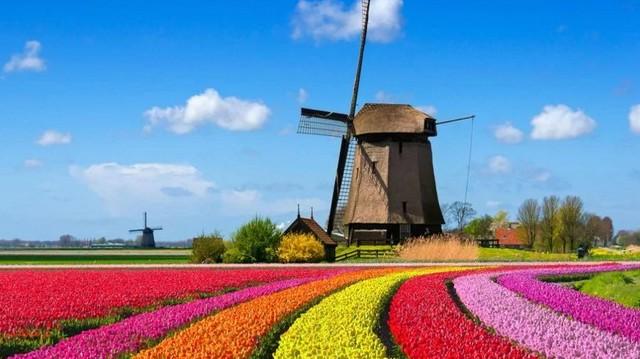 A Benelux államok kifejezés egy nyugat-európai államcsoportot jelöl. A felsoroltak közül, melyik nem tartozik bele?
