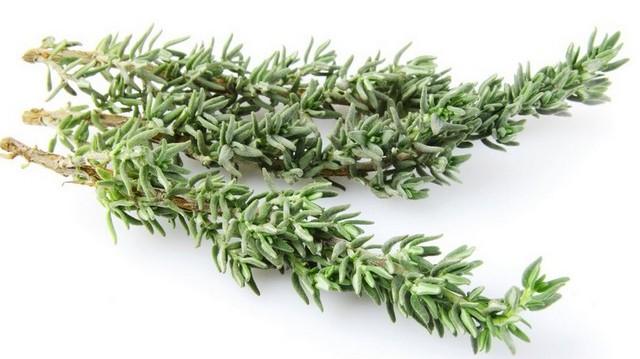 Ha már grillezés; akkor ezt a fűszernövényt, pecsenyefűként is szokták emlegetni. Többek között húsok ízesítésére használják. Melyik fűszernövény ez?