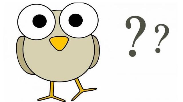 Tudományos neve: Bubo bubo. Melyik állat?