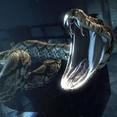 A kígyóktól.