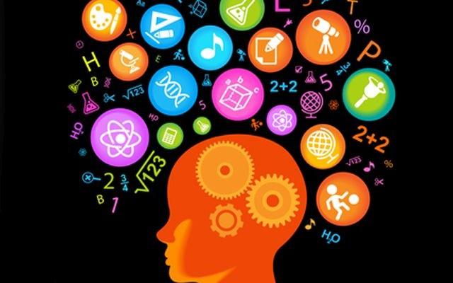 Az agy az egyik legfontosabb szervünk, tartsd edzésben ezzel a kvízzel